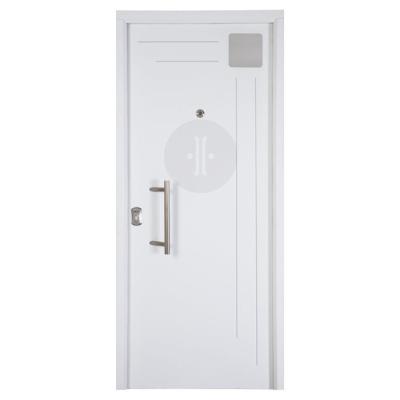Puerta metálica diseño lacada