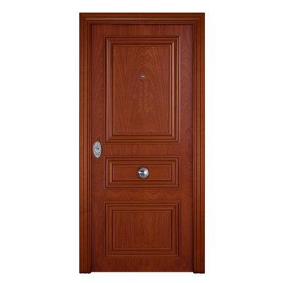 puerta-de-entrada-exterior-acorazada-serie-4B-DM230-Sapelly
